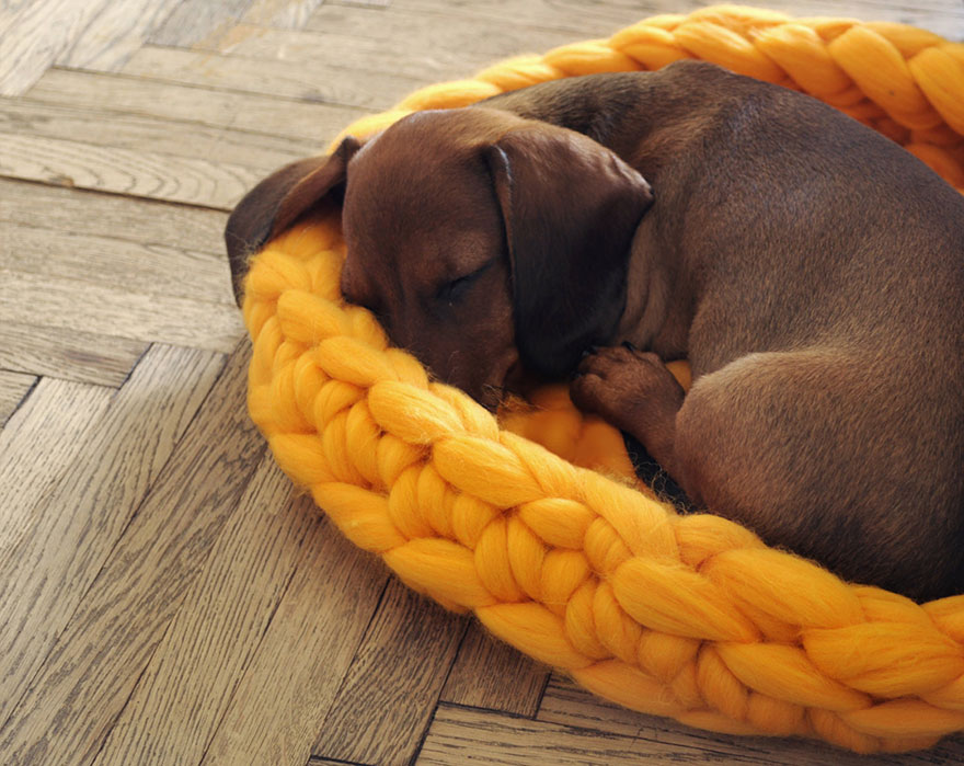 giant-chunky-knit-pet-beds-anna-mo-8