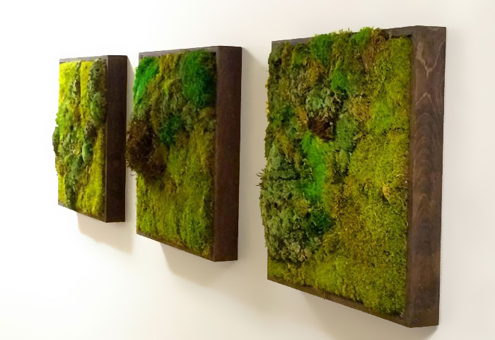 moss-walls-green-interior-design-trend-11__700