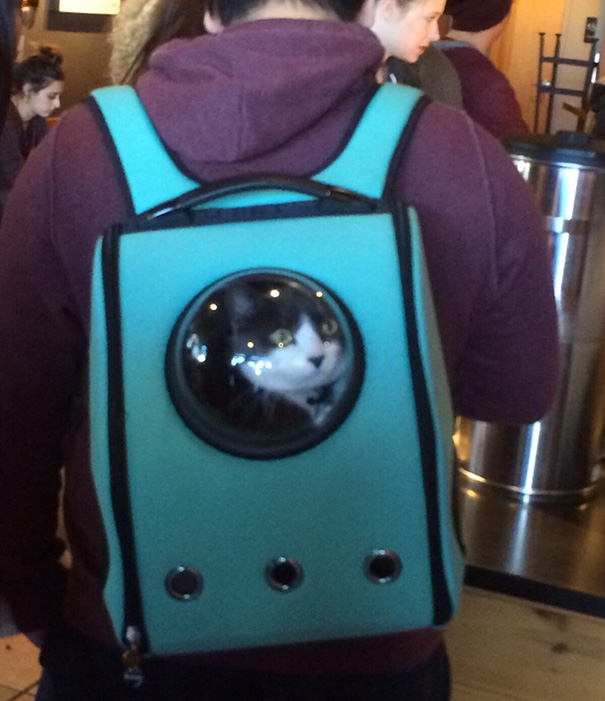 astronaut-pet-bubble-carrier-upet-1