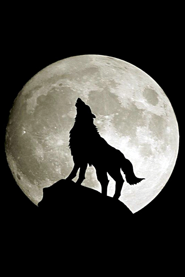 howling-wolf-iphone-wallpaper_dcd7458372f7f8f33010fa54c654f312_raw
