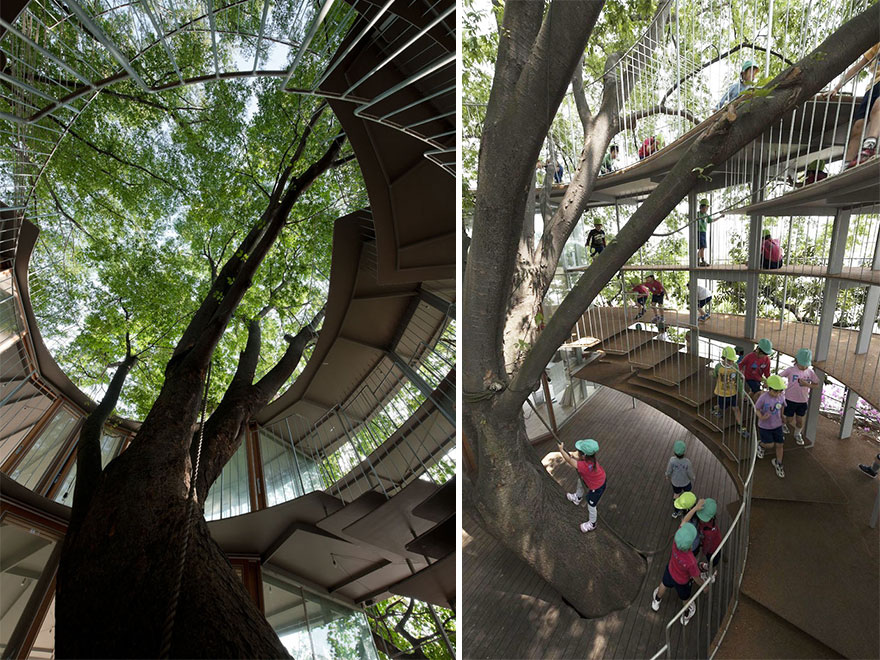kindergarten-around-tree-zelkova-fuji-tezuka-architects-32