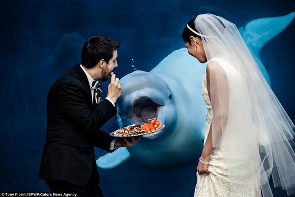 esküvőifotók2