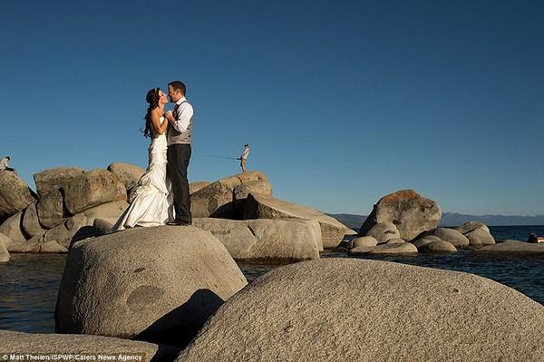 esküvőifotók8
