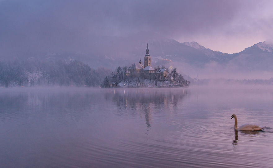 i-photographed-lake-bled-on-a-fairytale-winter-morning-3__880