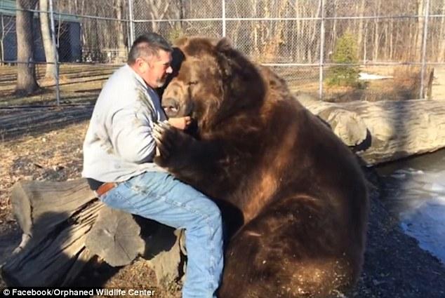 jim medve