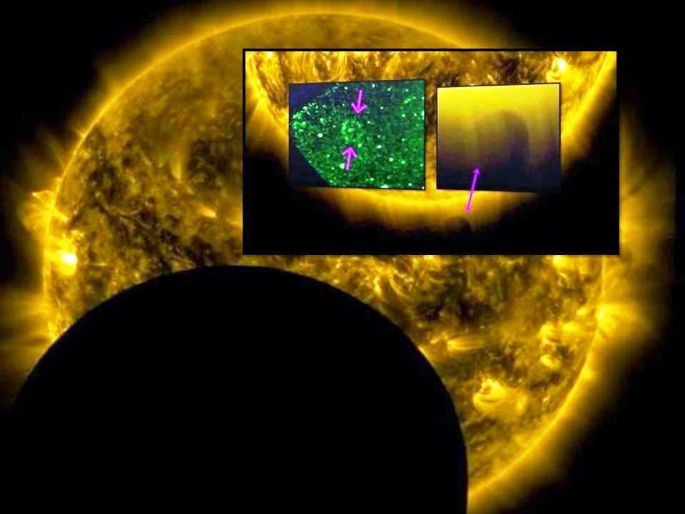 nasa sun ufo - 960×720