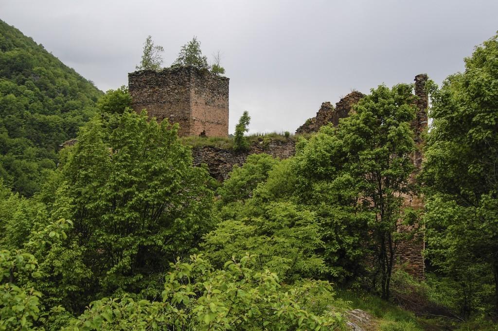 kolcvár(1)