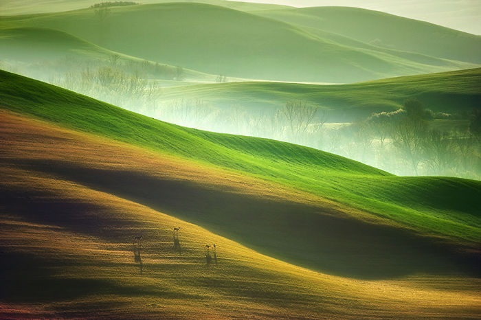 the-idyllic-beauty-of-tuscany-that-i-captured-during-my-trips-to-italy-9__700