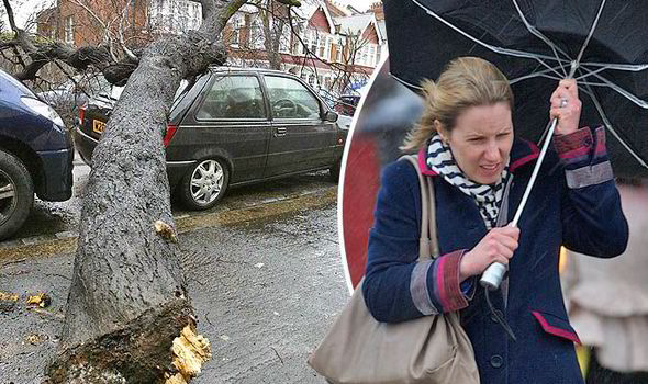 Woman-holding-an-umbrella-in-the-rain-567126
