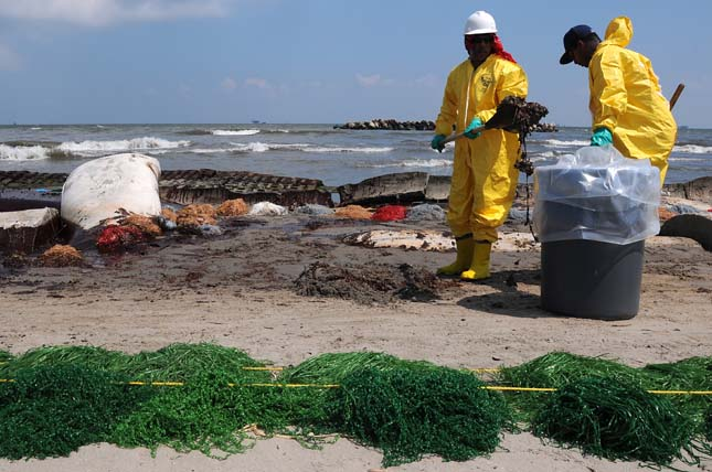 Health, safety and environment (HSE) workers contracted by BP clean up oil on a beach in Port Fourchon, La., May 23, 2010. Hundreds of contracted HSE workers are cleaning up oil from the Deepwater Horizon oil spill, which began washing up onto area beaches a month after the drilling unit exploded. (DoD photo by Petty Officer 3rd Class Patrick Kelley, U.S. Coast Guard/Released)