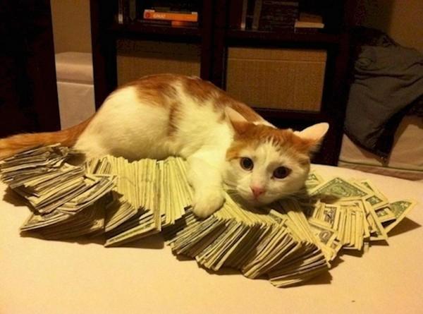 gazdagok10