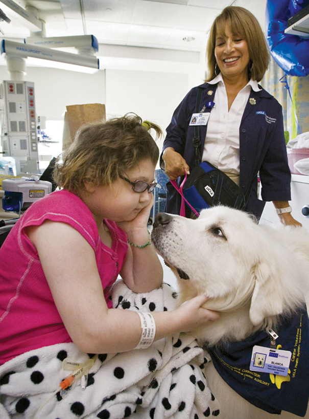 hospital-pets-allowed-animal-therapy-zacharys-paws-for-healing-juravinski-20