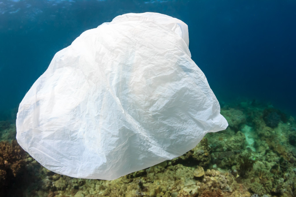 plastic_bag_ocean_pollution_creditshutterstock_0