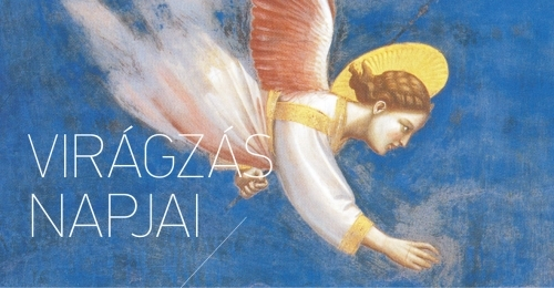 1011-3876-a-viragzas-napjai-2014-punkosdi-kulturalis-fesztival-az-orsegben