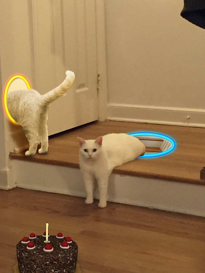 funny-half-cat-photoshop-battle-13-57357f76108b6__700