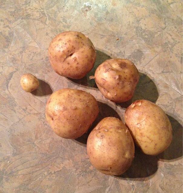 Megkértem a férjemet, hogy vegyen hat krumplit.
