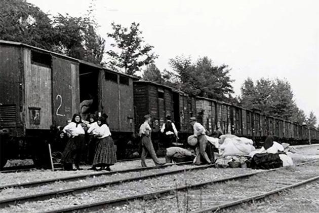 magyar-nemetek-kitelepitese-1946-januar