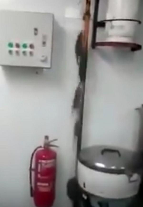 patkányokkonyha1