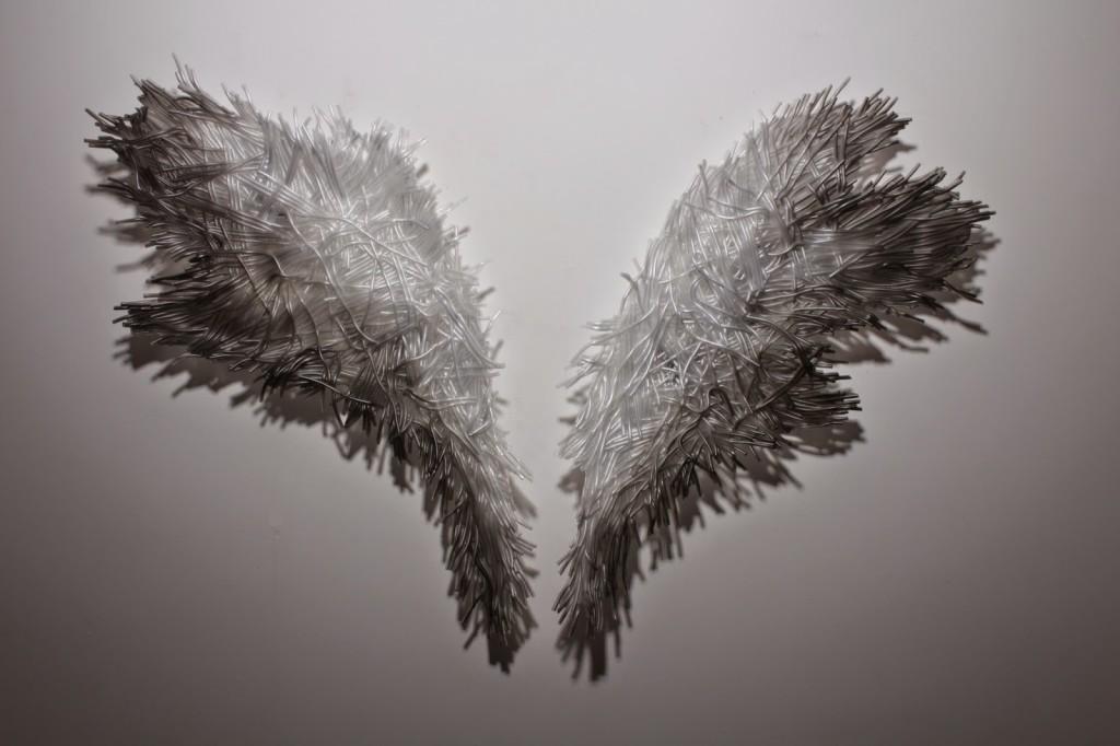 shelly-xue-angel-wings