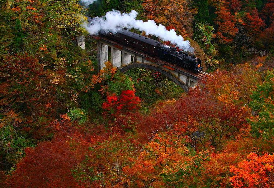 Őszi színek Fukushimában