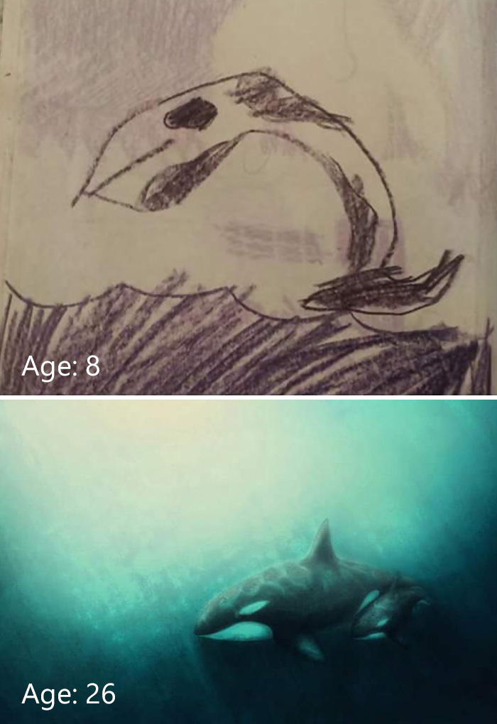 before-after-drawing-progress-whale-574eeb6cce16f__700
