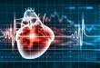 bigstock-Virtual-image-of-human-heart-w-48569282