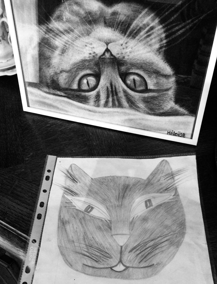 cats-1-57545d17bd202__700