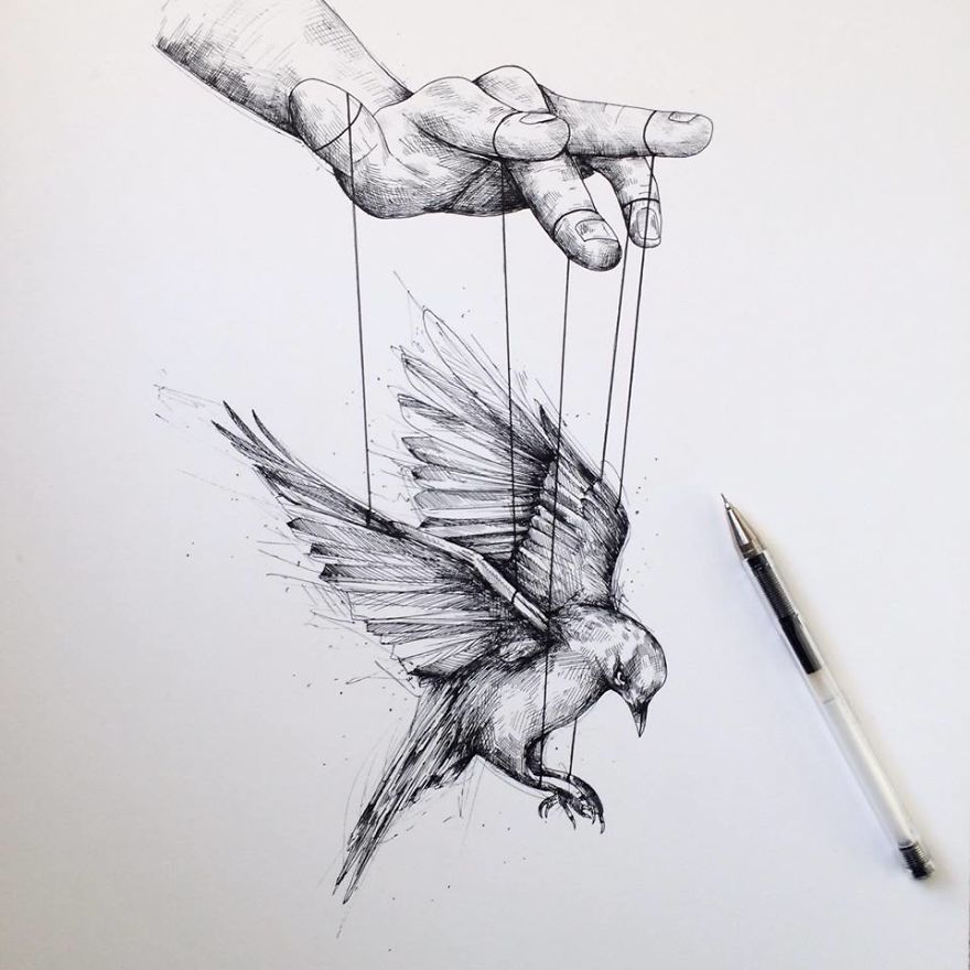 Alfred-Basha-Bird-ink-illustration-tatoo-57266e9858d01__880