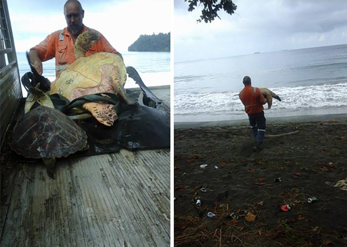 A férfi, aki teknősöket vesz a piacon, majd visszaengedi őket a tengerbe.