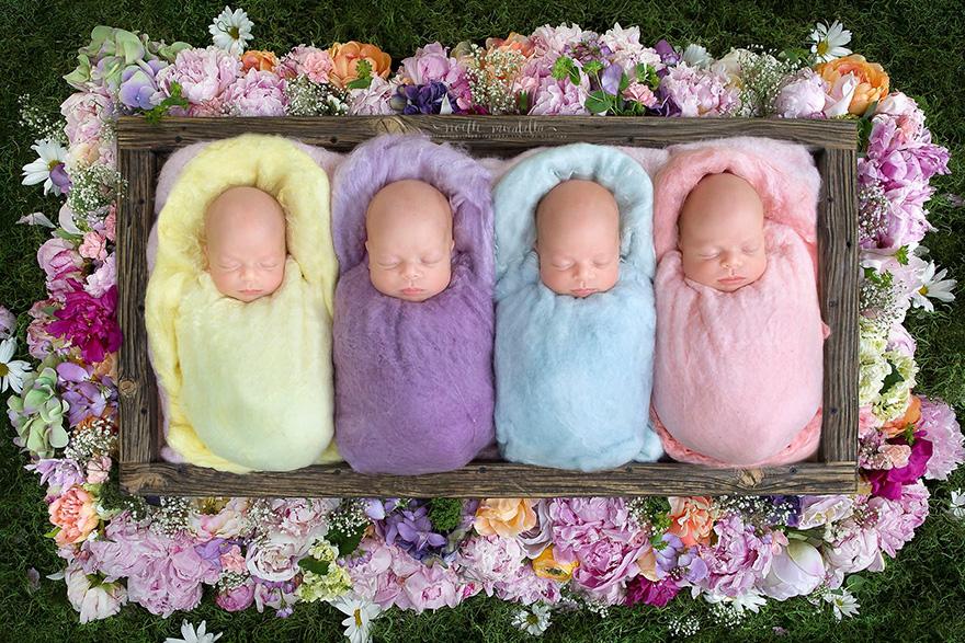 identical-quadruplet-newborn-photography-baby-photoshoot-noelle-mirabella-4