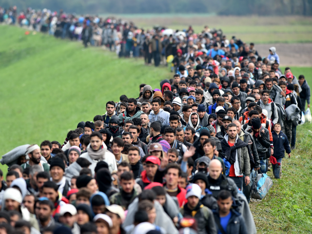 A-Bunch-Of-Migrants-640x480