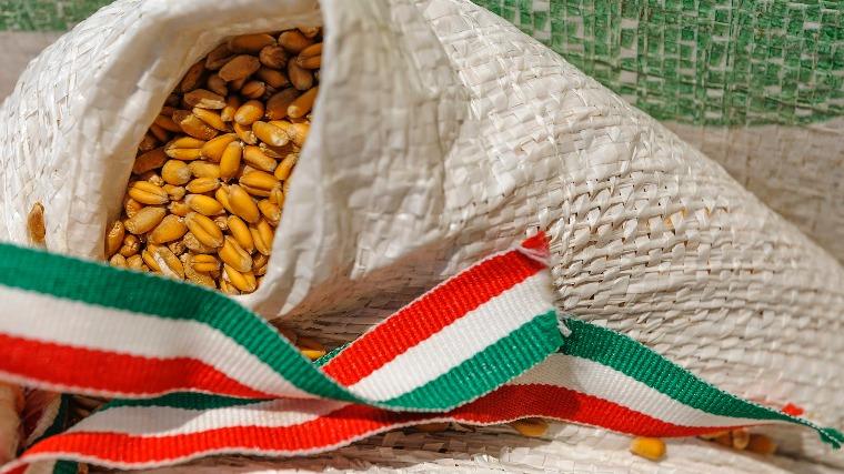 magyarok-kenyere-sajtotajekoztato