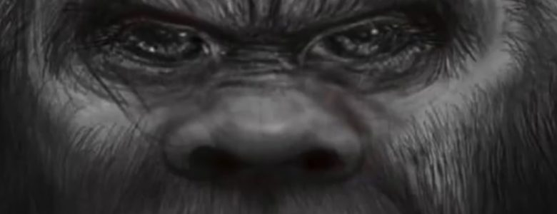 sasquatch-out-of-the-shadows-780x300