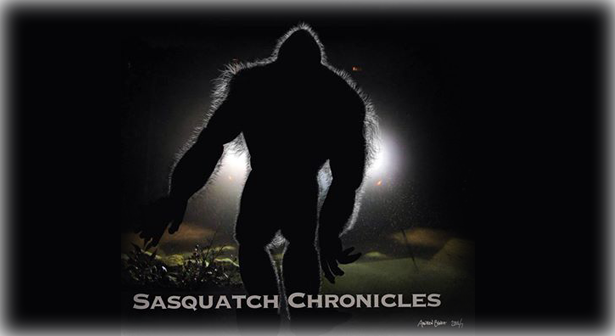 sasquatch-slide-04