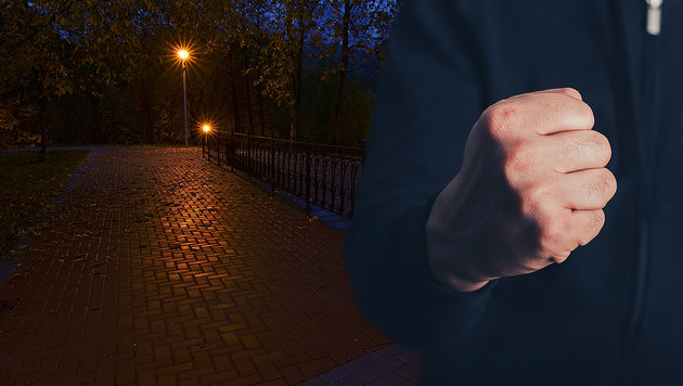 Betrunkene-Asylwerber-attackieren-Familie-in-Park-In-Halloween-Nacht-story-537308_630x356px_3f1f5d3a25feeef08adfae12d6627fbd__haloween-asylwerber-s1260_jpg