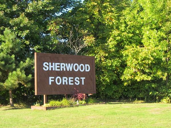 sheer wood